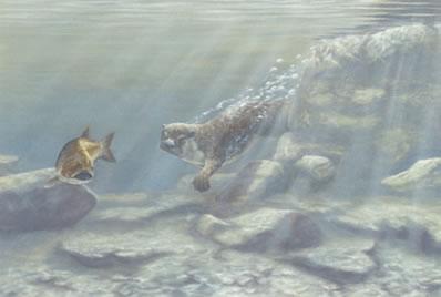trivial-pursuit-otter-fish-1549