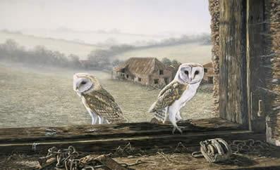 welcome-return-barn-owls-4289