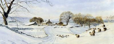 winter-daydreams-2320
