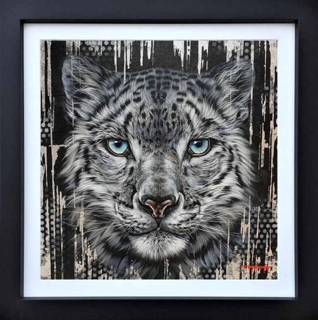 Cool Cat by Ben Jeffery