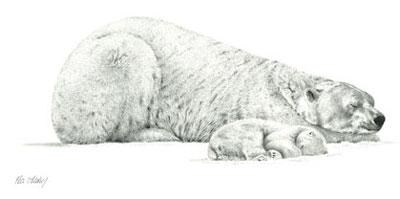 Forty Winks by Peter Hildick