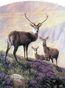 Highland Majesty by John Silver