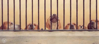 Jailhouse Rock (English Foxhound) by John Silver