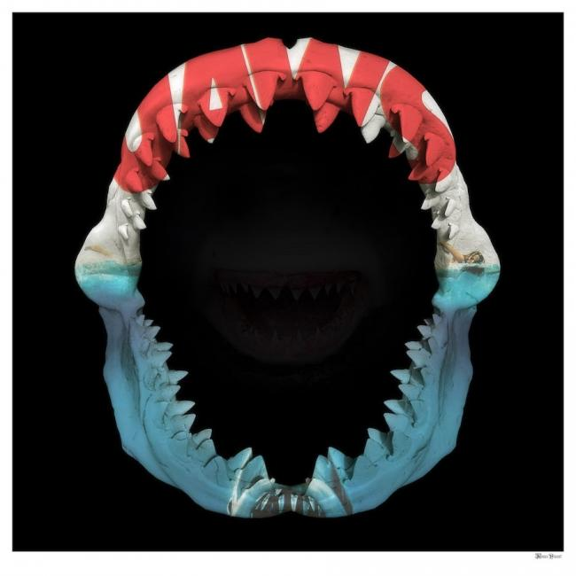 Jaws- Large by Monica Vincent