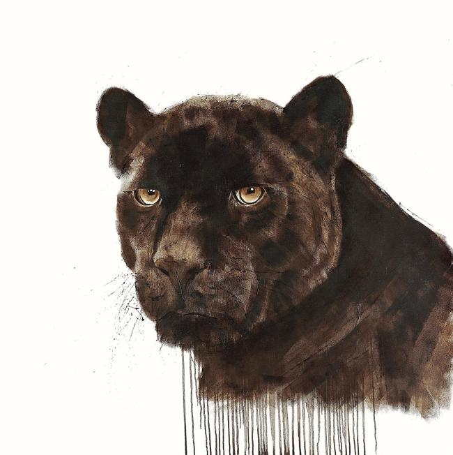Manchas by David Rees