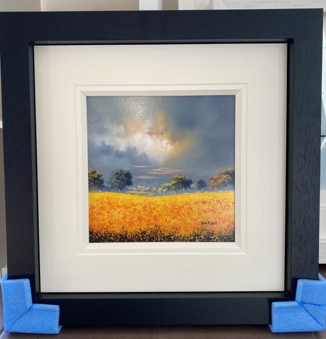 Sunshine Field (12x12) by Allan Morgan