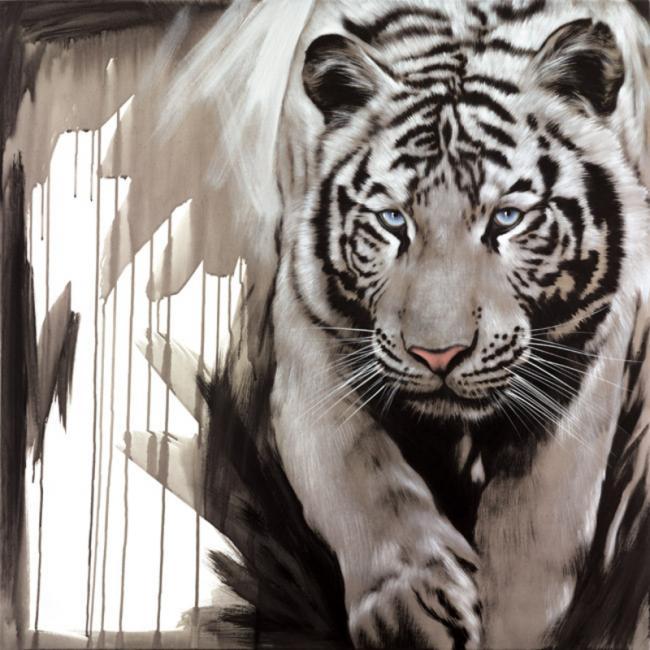 White Stripes by Jen Allen