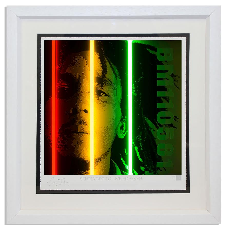 Bob Marley - Life Series by Courty