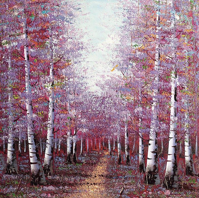 season-of-light-20923
