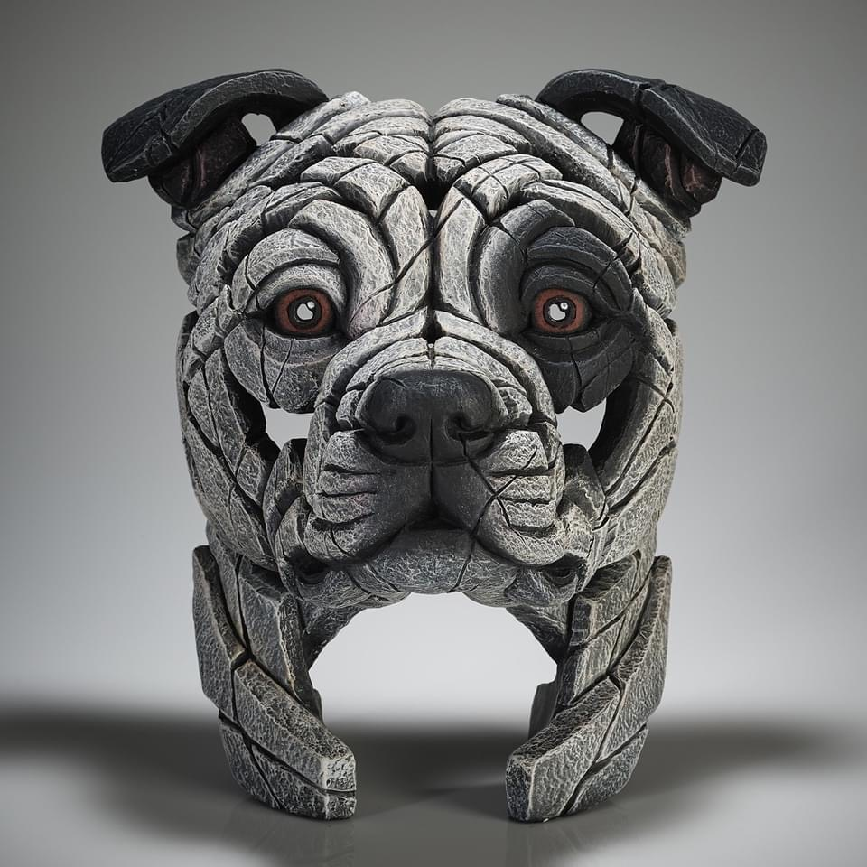 Staffordshire Bull Terrier Bust - White Patch by Edge Sculptures by Matt Buckley